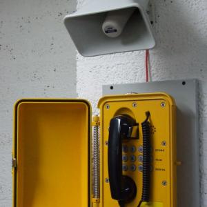DIA-377 LS30 Watt Hoorn